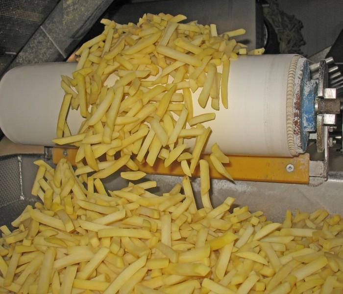 Frietproductie Belgische frieten